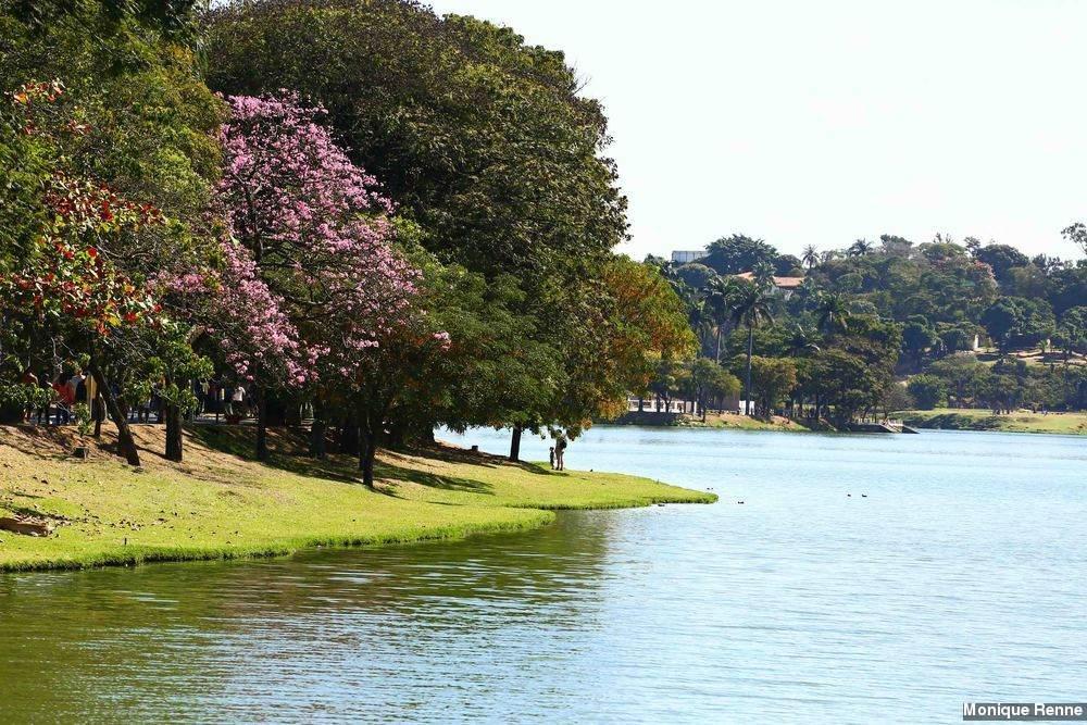 Pesquisadores encontram vírus misterioso na Lagoa da Pampulha