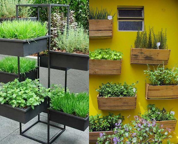 Como criar um jardim ou horta em sua casa?