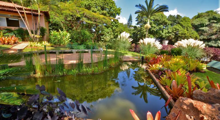 O Parque Municipal e a Fazendo Lagoa do Nada esta com projeto piloto de Jardim de Chuva